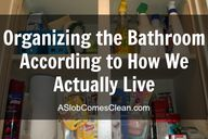 Organizing the Bathr