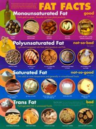 fats. good and bad