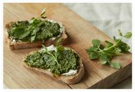 Pea Shoot Pesto with