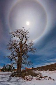 A moon halo in Mandan, North Dakota // Marshall Lipp