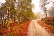 Autumn Travels #Trav