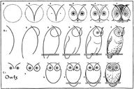 Draw yourself an owl