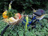 Fall Bike Planter ~