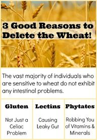 Why is Wheat Bad for