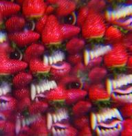 THEE OH SEES, floati