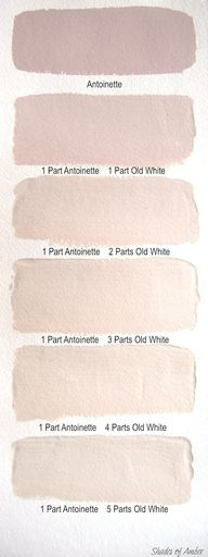 Blush wall colors