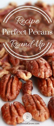 45 Sweet and Savory Pecan Recipes