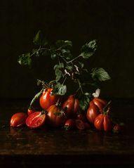 Still life, italian tomatoes & butterflies by Zaira Zarotti | @thefreakytable