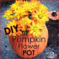 pumpkin flower pot