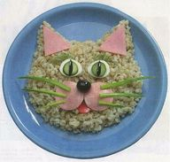 Brown rice cat. :)