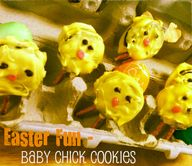 Easter baby chick co