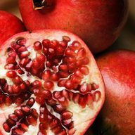 Pomegranate | Long a