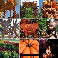 Fall at Walt Disney