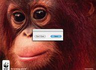 WWF eco manifests