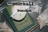 Seashell decor transition