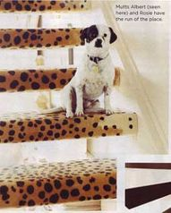 Leopard stairs.