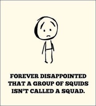 Squid / squad.
