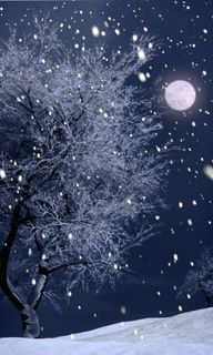 Snowfall and Moonlig