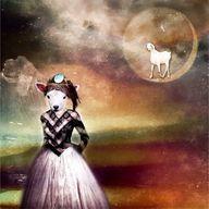By Pamela Viola, a s