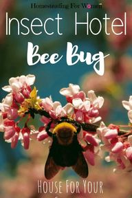Insect hotel bee bug house- #insecthotel #insecthousegarden #insecthouse #homesteadingforwomen
