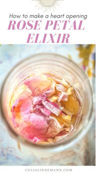 Rose Petal Elixir is one of the most decadent heart-opening remedies. This super easy, intuitive recipe uses half alcohol, half honey and a jar of Rose petals, and can be used for internally for medicine, externally for burns (great for sunburn) and as a flavoring ingredients in recipes and drinks.
