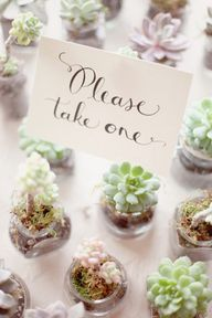 succulent wedding -