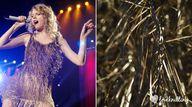 Taylor Swift. Celebr