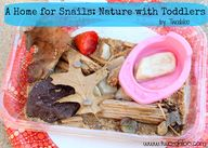 A Home For Snails at