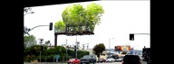 Billboards transform