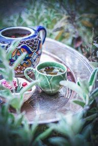 Hawthorn: Protective and Purifying Medicine for Healing the Heart – Celia Linnemann