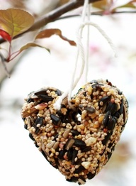 DIY Bird Feeder Hear...