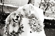 Bride and her dog :)