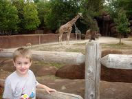 St. Louis zoo by stl