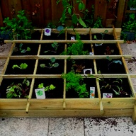City vegetable garde