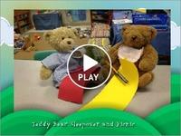 Classroom: Bears