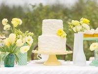 My Wedding Dreams!