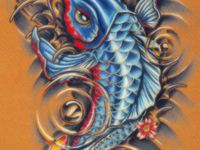 1000 images about koi fish tats on pinterest japanese for Dragon koi for sale