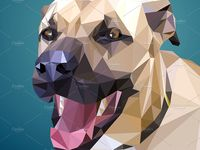 Low Poly Pinterest Board