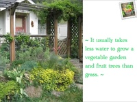 """Food not lawns is a movement that is gaining attention for economic and environmental reasons. Instead of mowing and wasting water on grass, get rid of the lawn, plant healthy food.    *** Click on """"# pins"""" button to see all earlier pins that have been posted."""