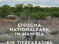 Namibia | Journey Glimpse / Namibia ist ein echtes Traumland. Wunderbare Natur und eine unglaubliche Tierwelt laden zum Entdecken ein. Namibia sollte bei keiner Afrika-Reise vergessen gehen