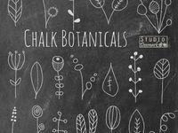 Chalkboard designs  Board