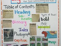 Anchor Charts and Posters