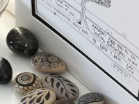 Rocks / Rocks