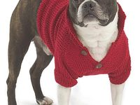 17 Best images about knitting for small dogs on Pinterest Free pattern, For...