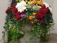 container garden decor