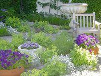 French herb gardens on Pinterest Herbs Garden French