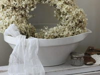 hydrangea beautify your house and make it your home