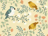 BIRCH Organic Fabrics / Birch Organic Fabric