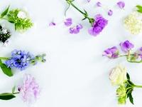 GRÜN / Schönes für den Garten