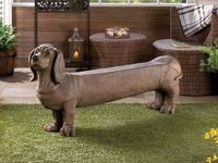DOGS|Doxies! 3